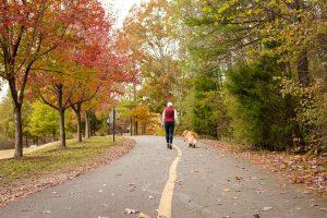 fall dog photoshoot bond park