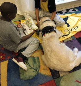 therapy dog helping kids read